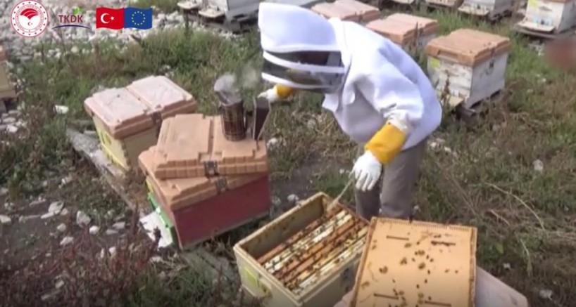 Amasyalı Halit Çelebi, Ürettiği Bal İle Dünya Birincisi Oldu