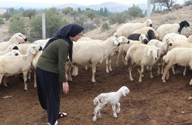 """""""Kadın Çiftçilere Projelerimizde Öncelik Veriyoruz"""""""