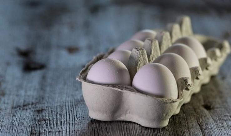 Tavuk Yumurtası Üretimi Yüzde 4,2 Arttı